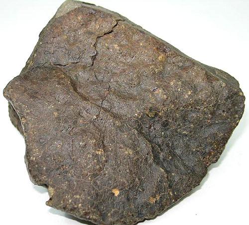 NWA 5206 (LL3.05) - NWA 5206 (LL3.05) - Stone Before Slicing