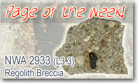 NWA 2933 (L3.3) Regolith Breccia