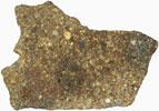 NWA 3119 (LL4 Chondrite) 16.3g Complete Slice